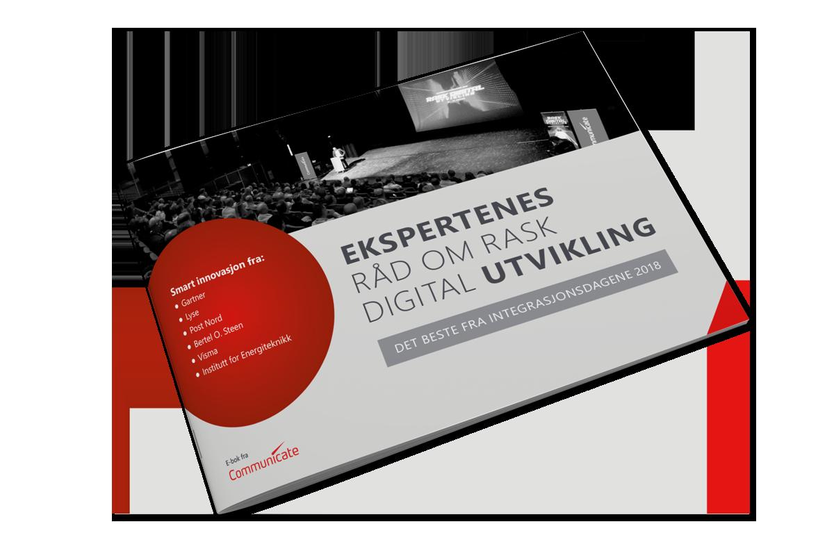 Ekspertenes_rad_whitepaper_bok_bilde_jan19